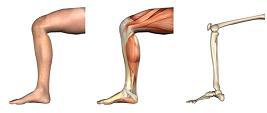 Inner Thigh Core Strength Pilates NYC Backbone