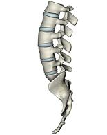 Pilates NYC Core Strength Lumbar Sacrum Tailbone