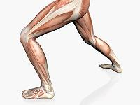 Greater Trochanter Core Stability Pilates Midtown