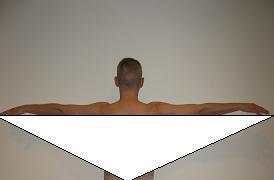Quadratus Herald Wingspan Ticeps Traps Triangle