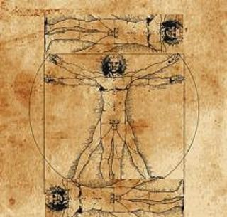 Da Vinci Drawing Proportional