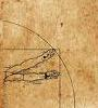 Da Vinci Drawing Arms