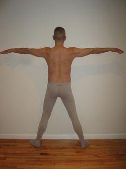 Vetruvian Man - With a Wingspan