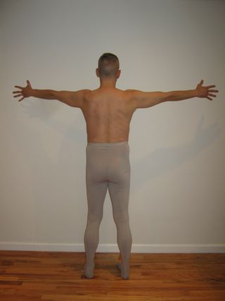 Backbone and Wingspan Back Body Perception