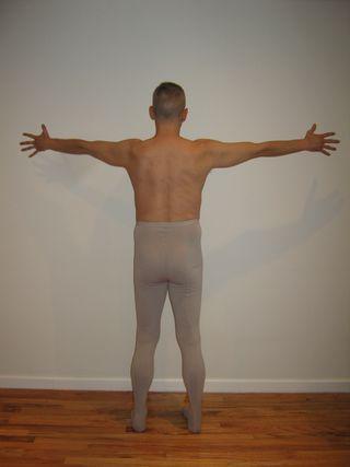 Backbone and Wingspan Back Body Perception