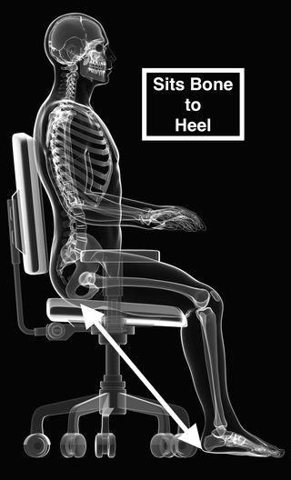Sitting posture stability - 3d rendered medical illustration - © Sebastian Kaulitzki
