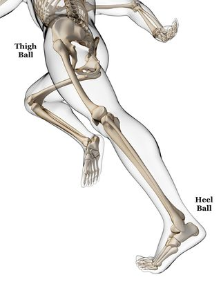 Heel ball - thigh ball - 3d rendered illustration - runner anatomy - © Sebastian Kaulitzki - Fotolia.com