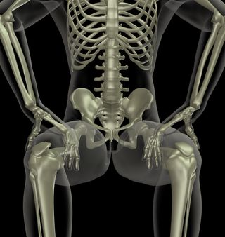 Skeletal system in healthy sitting position - femur bones deepening into hip sockets - 3D medical man in sitting position © Kirsty Pargeter - Fotolia.com