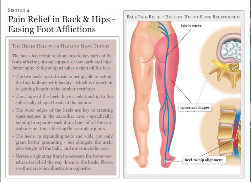 Sciatica pain relief - lumbar vertebrae -