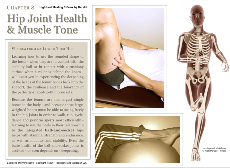Femur to hip joint - ball and socket - running - High Heel Healing - Herald