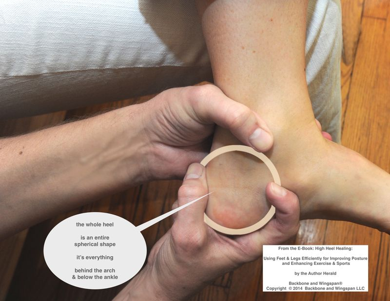 Spine foot relate - whole heel - arch - ankle - High Heel Healing - Herald
